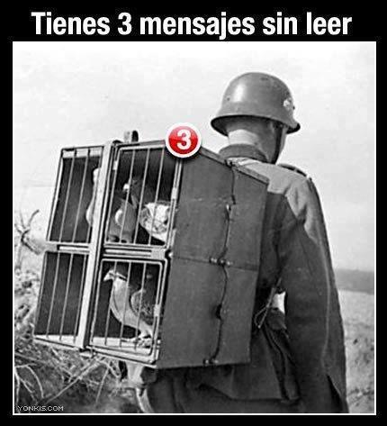 mensajes sin leer