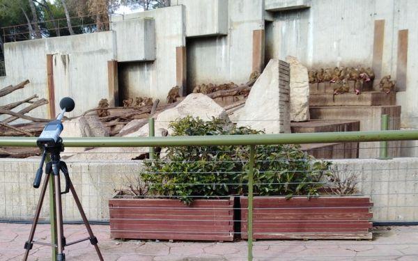 Mediciones De Ruido En El Zoo De Madrid Con El Objeto De Conocer Los Niveles De Ruido Existentes En Sus Instalaciones Y Mejor Zoo De Madrid Zoo Ruido Ambiental