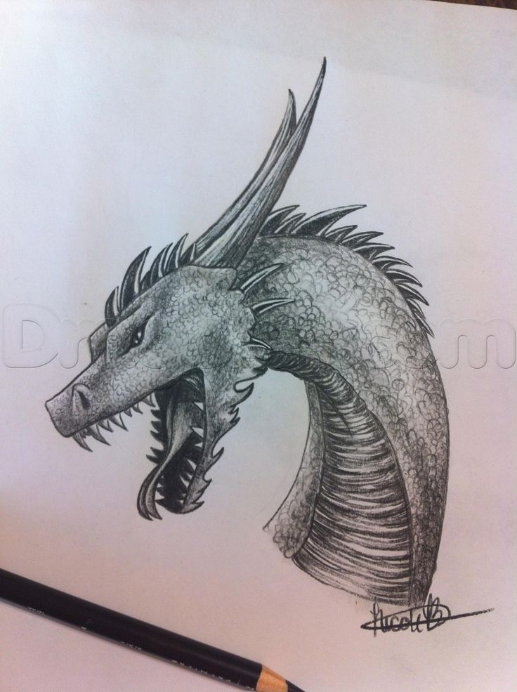 45 best draw with pencil images on pinterest drawings draw and how to draw a dragon ccuart Choice Image