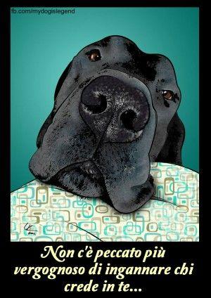 Immagini con frasi, aforismi e citazioni sui cani