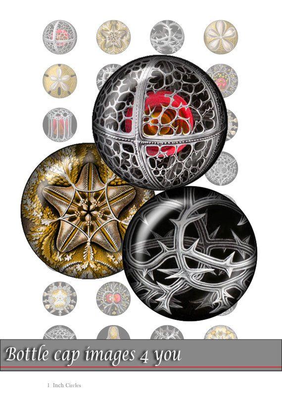 Collage digitale foglio - gotico Macromir - bottiglia tappo immagini  Immagini digitali stampabili per vostro mestiere: bottiglia tappi,
