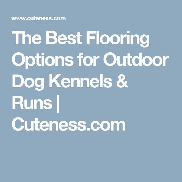 Best flooring options for dog kennels