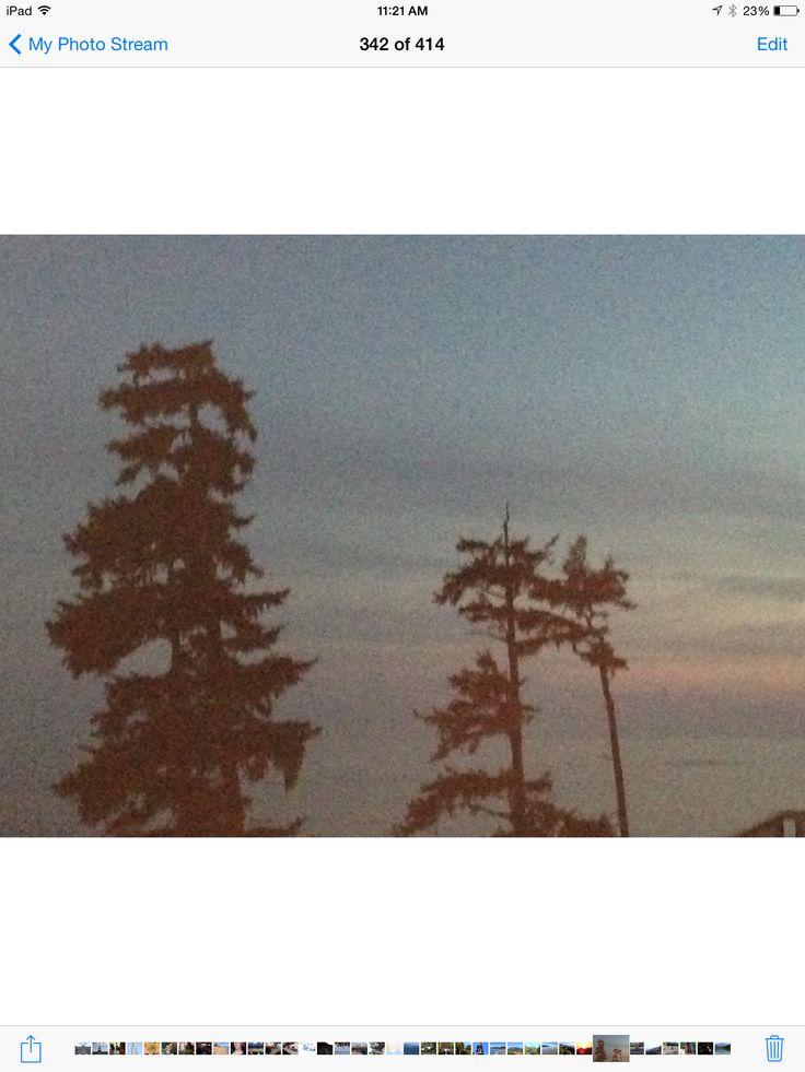 Dusk in Ucluelet British Columbia