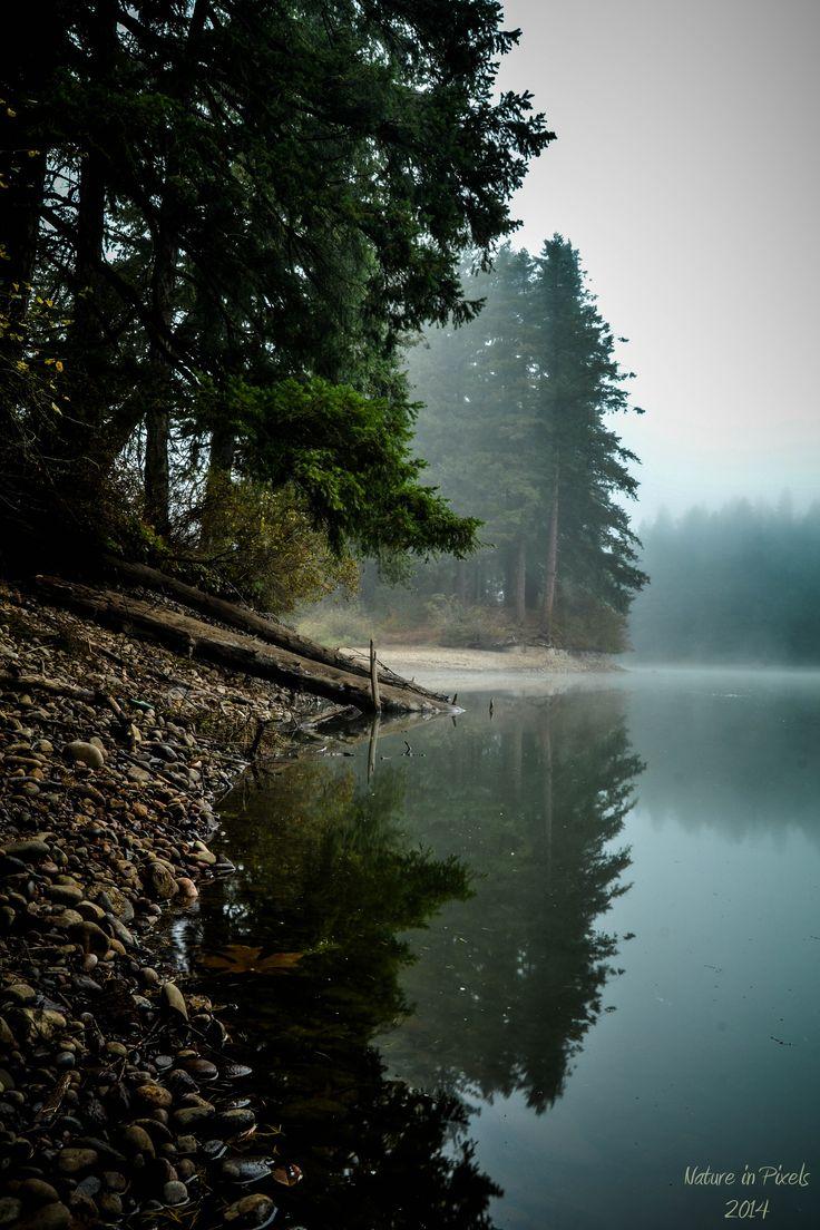 Lacamas Lake - Camas, Washington. Crazy I know exactly what point of the lake this is! <3 Camas!