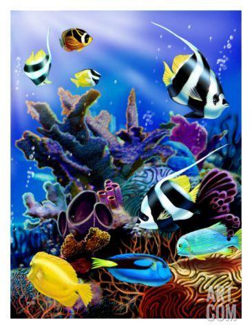 Resultado de imagen para pinturas de delfines en oleo hawaianos