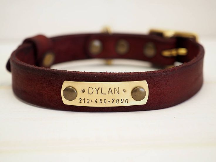 Personalized Dog Collar, Dog Collar, Dog Collar Leather, Leather Collar, Leather Dog Collar, Pet Gifts, Dog Collar Personalized, FREE ID TAG by VacForPets on Etsy