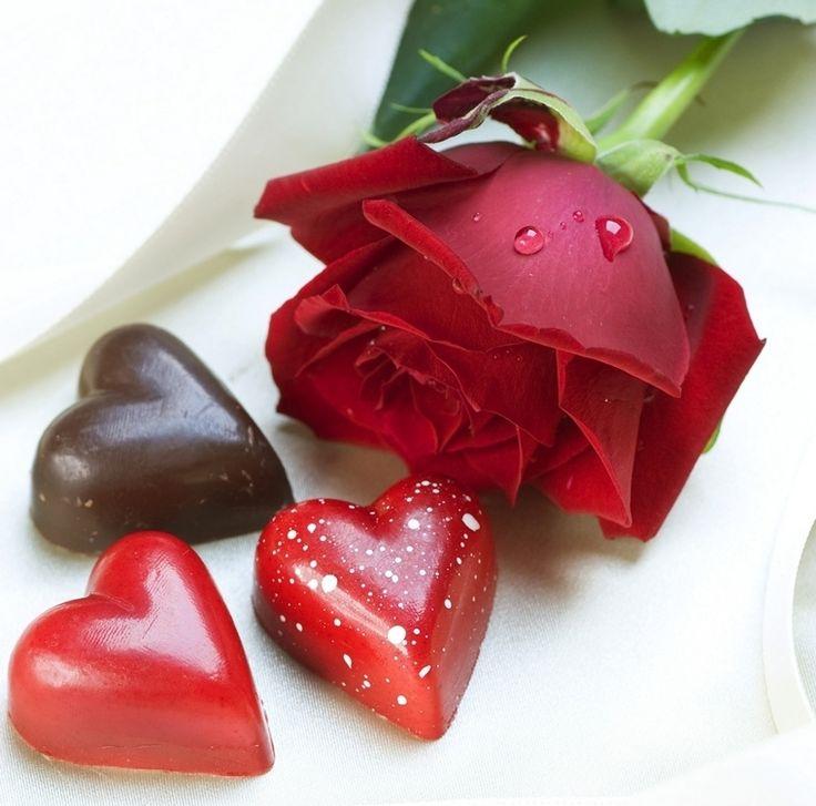 Happy Valentines Day Roses HAPPY VALENTINE S DAY Roses