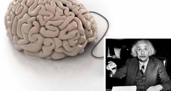 METODE DE STIMULARE A CREIERULUI. LA UNELE DIN ELE NU TE-AI FI GANDIT!  Studiile arata ca nu folosim nici pe departe capacitatea maxima de procesare a creierului nostru, ba chiar anumite obiceiuri si comportamente pot avea un impact negativ.  Antrenand continuu muschii creierului si asigurand in alimentatie o combinatie potrivita de elemente nutritive, …