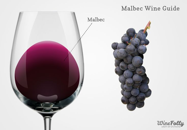 "Malbec Wine Characteristics FRUIT FLAVORS (berries, fruit, citrus) Black cherry, Pomengranate, Plum, Raspberry, Blackberry, Blueberry |   OTHER AROMAS (herb, spice, flower, mineral, earth, other) Cocoa, Milk Chocolate, Coffee, Mocha, Molasses, Leather, Black Pepper, Green Stem, Gravel, Tobacco |   OAK AGING Vanilla, Dill, Coconut |   ACIDITY Medium |   TANNIN Medium |   SERVING TEMPERATURE ""Slightly Cool"" 69 ºF (21 ºC)"