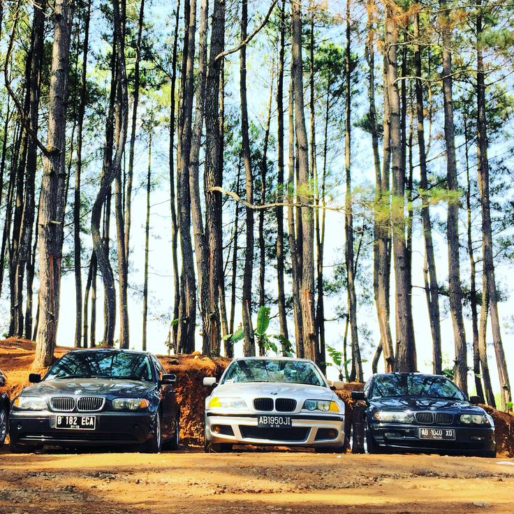 2015-11-29 Life like it is... E46Bimmers To The Jugle @hutanpinus @yogyakarta  Love bimmers @e46_bimmers @yogyakarta #e46bimmers #ige46bimmers  #Indonesia #bmw #bmwlover #worldwide #e46zone #e46forlife #e46lover #e46pic #bmwgram #igbmw #bmwe46 #igautomotive #e46nation #e46gramm #bimmerloveh