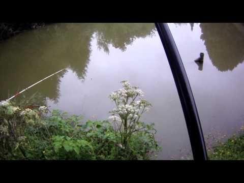 peche du gardons en petit étang 2/2