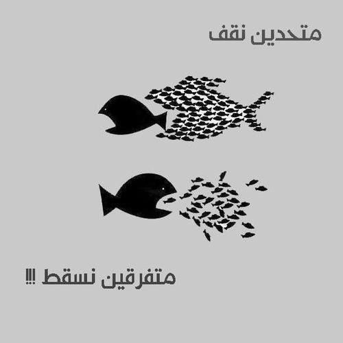 *أحمد الشقيري