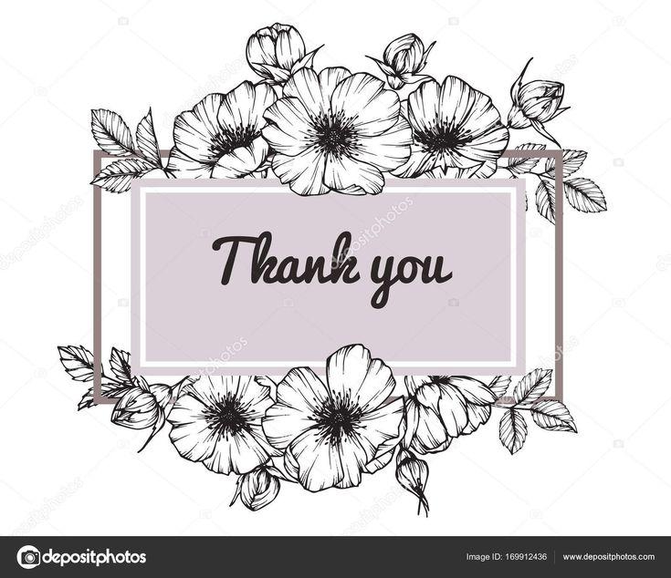 Marco de flor color de rosa salvaje. Dibujo y dibujo con línea blanco y negro-arte — Ilustración de Stock #169912436