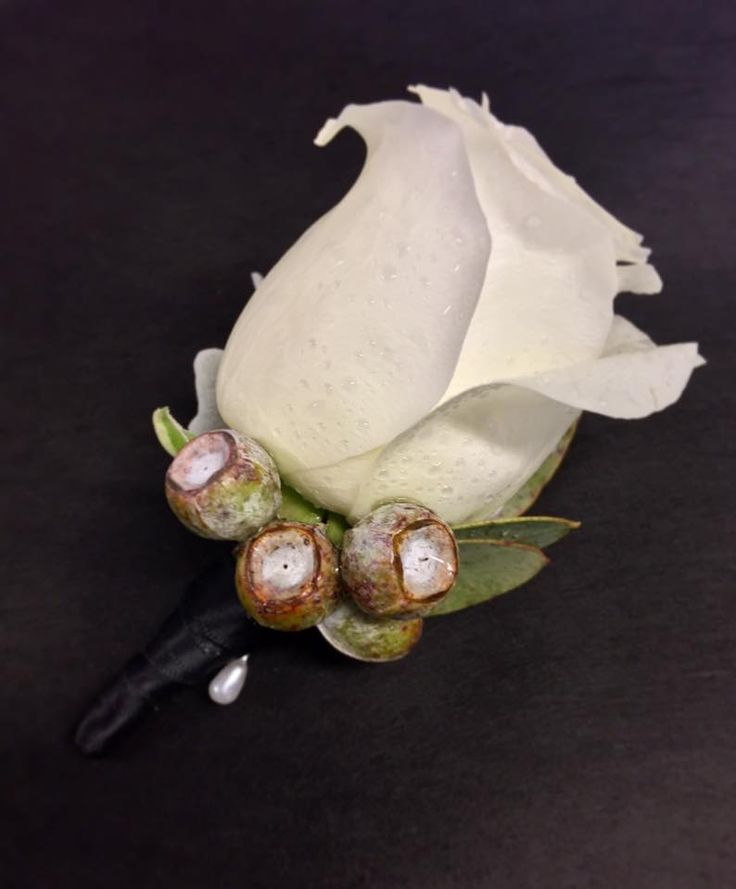 white rose and tetra nut buttonhole  created by Lovely Bridal Blooms