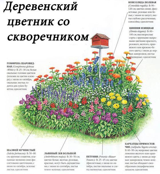 Схема деревенского цветника со скворечником