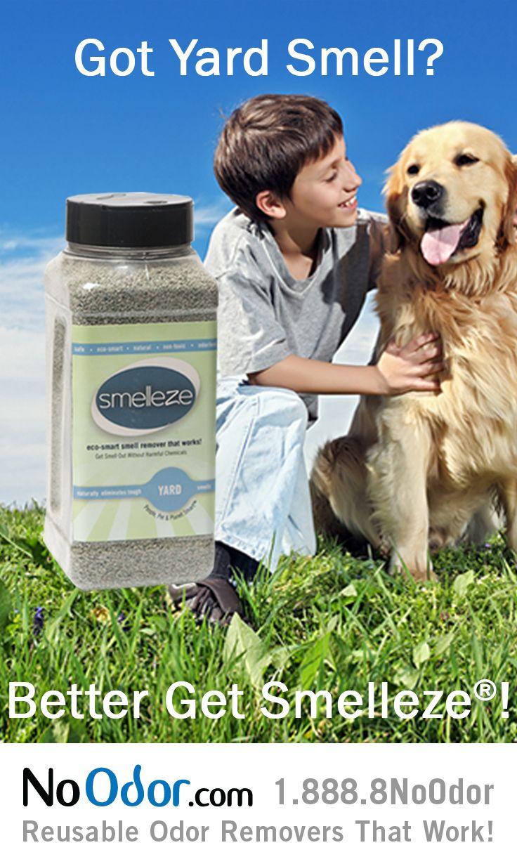 Natural Deodorizer Dog Run