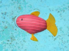 Hi ha un peixet al fons de l'estany #sortirambnens