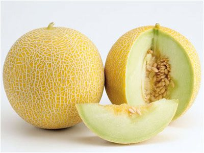 Galia Melons 	   The Galia is a type of hybrid melon originating from a cantaloupe-honeydew cross, larger than a canteloupe, and with deep green flesh. The name Galia is the feminine form of the Israeli name Gal (meaning 'wave'