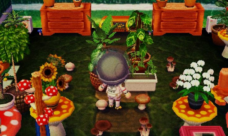 Original And Animal Forest Animal Crossing City Folk Animal Crossing New Leaf