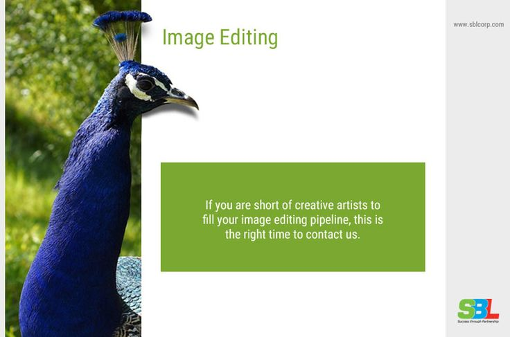 SBL image editing services