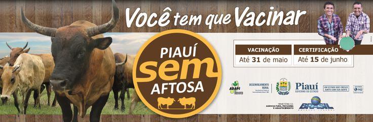 Anúncio: Outdoor Cliente: Governo do Piauí Campanha: Piauí Sem Aftosa (2017)