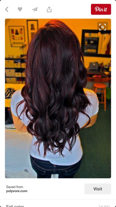 Plum with dark burgundy hair color