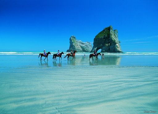 Horse trekking is one of many enjoyable activities in the Abel Tasman region.   Beautiful Wharariki Beach, is a good drive over `Marble Mountain' through Takaka and beyond Farewell Spit)