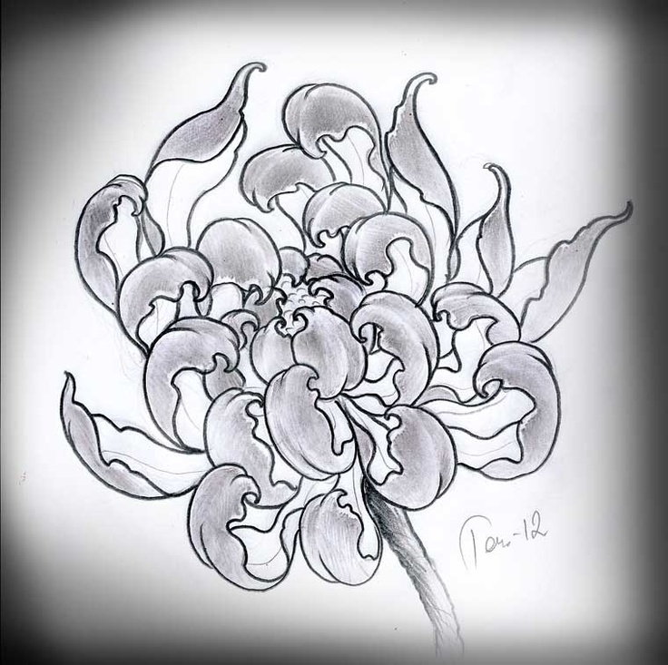 If you could draw a chrysanthemum like this and slightly modify it, it would be very similar to the spider lily.  chrysantemum by ~TeroKiiskinen on deviantART