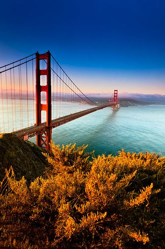The Golden Gate Bridge in San Fransisco. Though I've been to California several times, I have yet to see this.