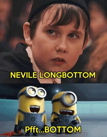 Harry Potter / Despicable Me crossover