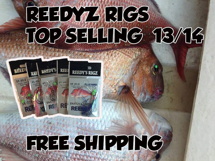 snapper Snatchers rigs are a good option while reef fishing offshore or when fishing for snapper and other reef or surf  species stock up on rigs at this discounted price dont pay 13.95 each at places like bcf