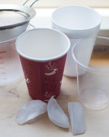 Science Fair: Which Cup Best Prevents Ice from Melting?
