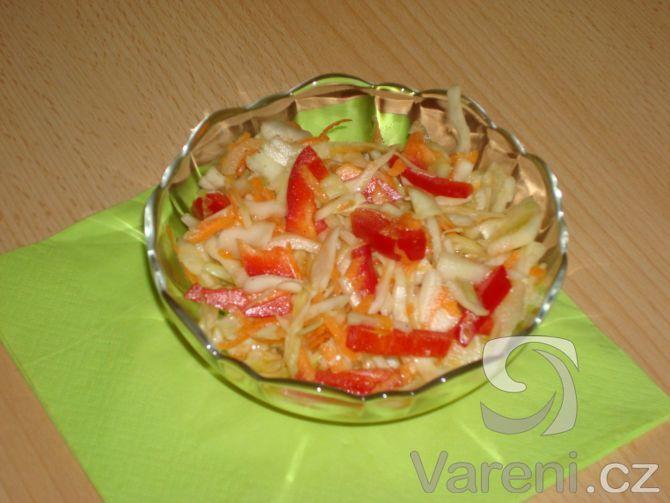 Recept Salát z hlávkového zelí se zálivkou - tak takhle nějak by ten salátek mohl vypadat:-)