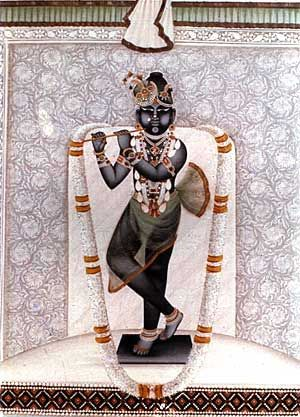 Lalit Tribhangi Lala. Shri Gokulchandramaji, fluting boy Krsna black icon, the Moon of Gokul and stands in a tribhangi posture, bent in three places, His legs crossed at the ankles. He is poised to play the flute. which draws the Gopis into ecstatic dance with him - Rasa Lila.
