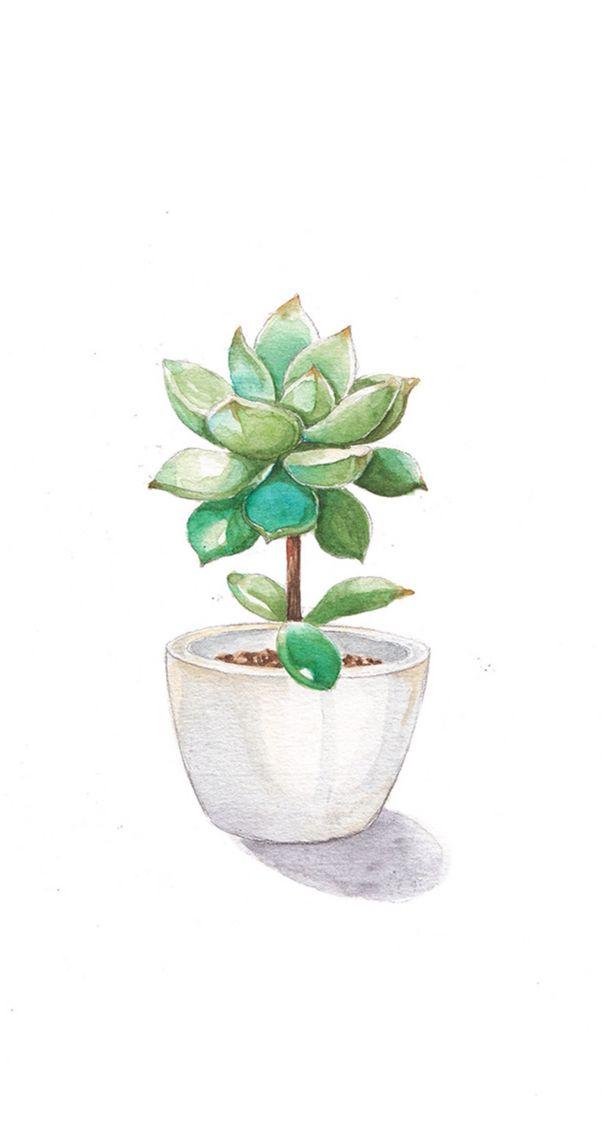 Plant Wall Art Printable