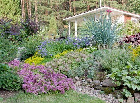 Сад Ольги Савиной - альпийская горка минимального ухода