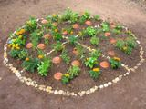 Plant a pizza garden!  Use plants such as Greek Oregano, Italian Flat Leaf Parsely, Roma Tomato, Basil, & onions that you can put on a pizza.  This would be a great way to get kids interested in gardening.~I did this at a local community garden but much larger, it turns out very cool, worth doing if you have the space!