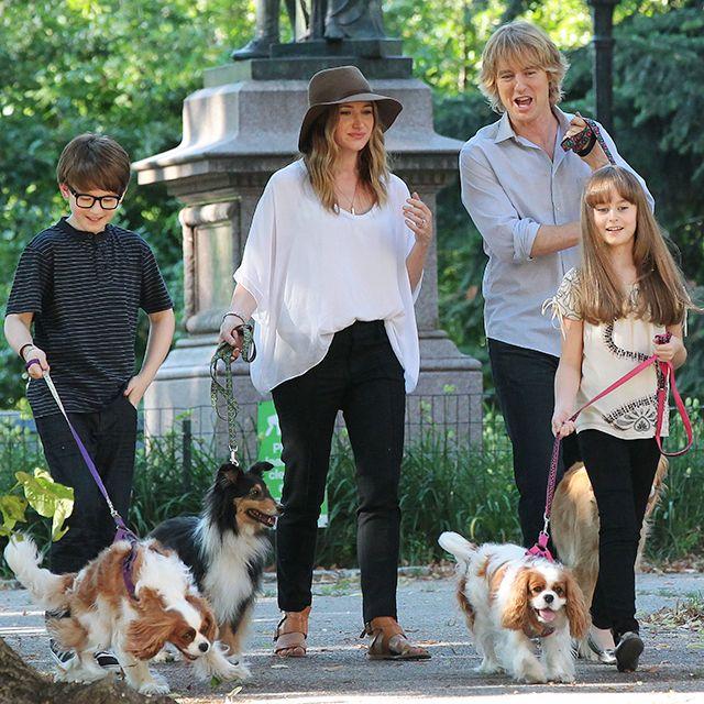 Internet celebrity dogs cavalier