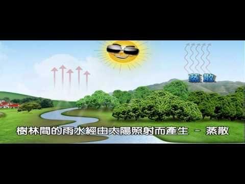 兒童版 水循環介紹影片02 - YouTube