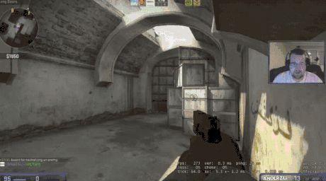 CS:GO player's flashbang reaction
