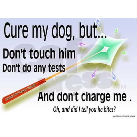 For fellow vet techs!