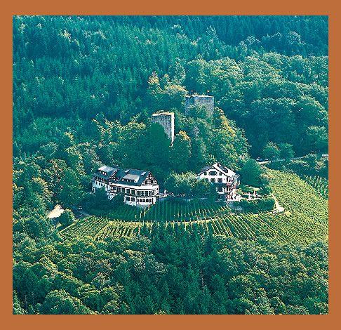 Burg Windeck Baden Baden  Hochzeitslocation Karlsruhe  Umgebung  Castle Restaurant Travel