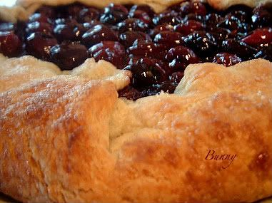 Fresh Cherry Crostata - a freeform crostata, recipe from Epicurious originally, all fillings come out great with it.  =)