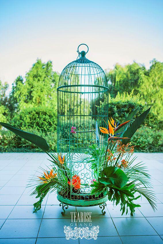 Trópusi esküvő - kültéri dekoráció óriáskalitkával, trópusi virágokkal, madarakkal