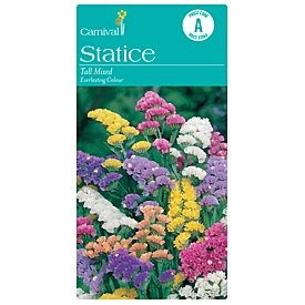 Carnival Statice Tall Mixed Vegetable Seeds $2.14 .70 seeds