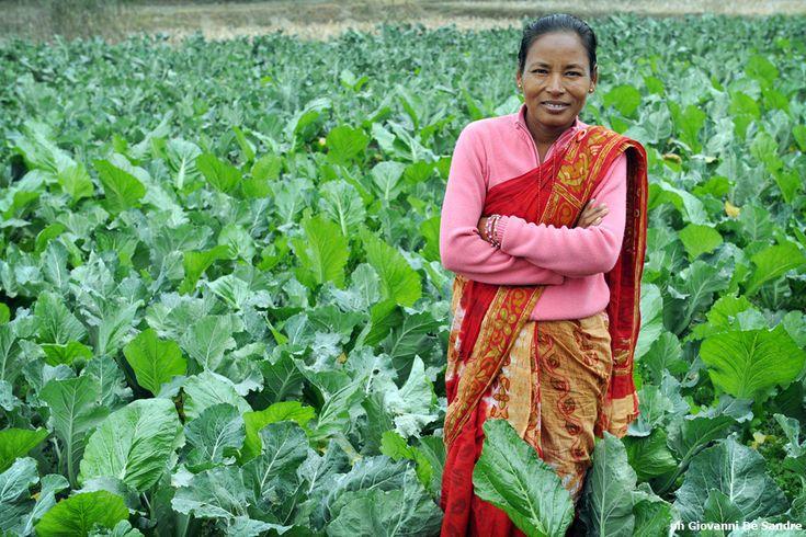 Un bell'esempio vincente, che rende orgogliosa la donna protagonista, di uno dei quasi 200 microcrediti investiti in attività agricole o di allevamento.
