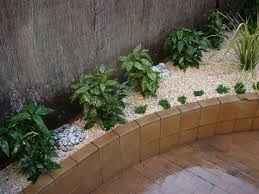 resultado de imagen para decoracion con plantas de sombra