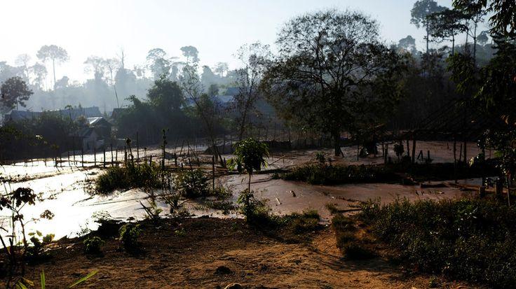 Für die Wayapi-Indianer im Norden Brasiliens werden Bergbau Unternehmen und illegale Goldgräber zu einer existentiellen Bedrohung. Die Wayapi leben im Regenwald des Amazonas in der Nähe der Grenze zu Französisch Guyana. JEDES Volk und jede Kultur ist wichtig, wertvoll und schützenswert. Die Vielfalt an Kulturen ist ein Schatz, der für die Entwicklung der gesamten Menschheit notwendig ist. Kein Glied dieser Kette darf zerstört werden!