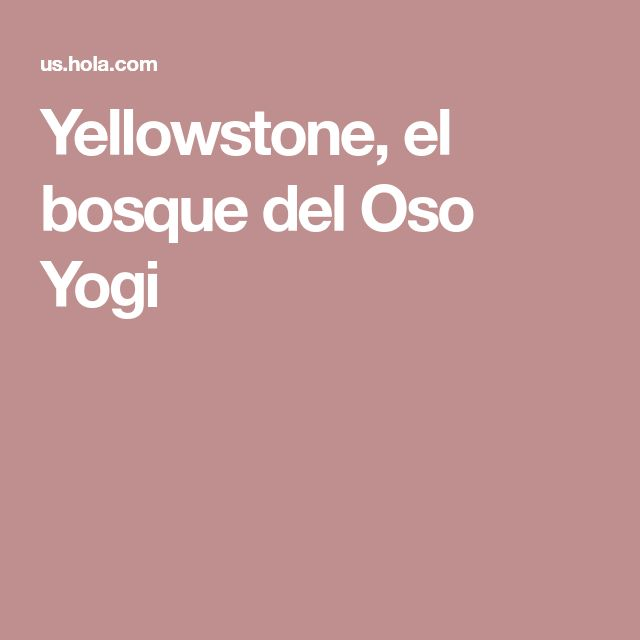 Yellowstone, el bosque del Oso Yogi