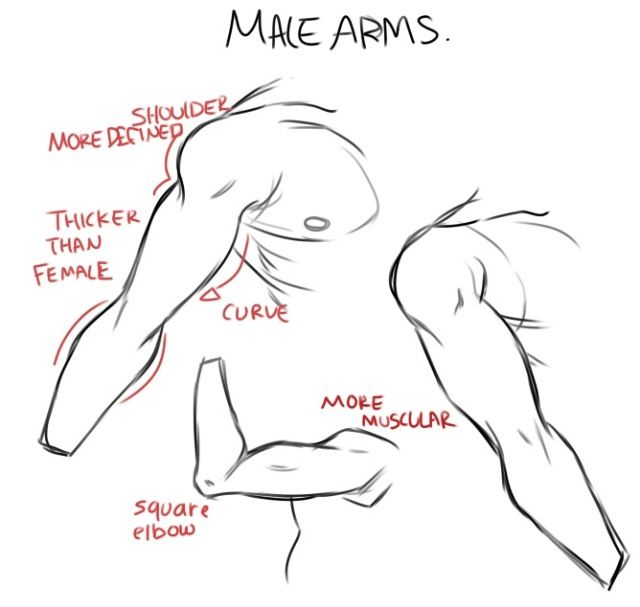 Male arms drawing tutorial manga anime pinterest for Cartoon body tutorial